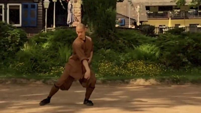 Shaolin 7 Star Fist 少林七星拳类 by Master Shi Heng Yi of Shaolin Temple Europe