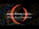 A Perfect Circle - Weak And Powerless bass cover everyday play#182