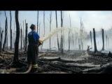 реальные масштабы пожаров в Тверской области в десятки раз больше, чем по официальным данным