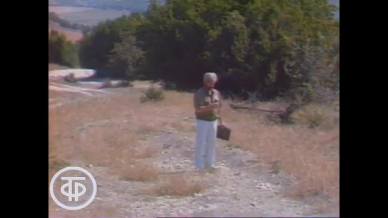 Клуб путешественников Об экспедициях Тура Хейердала и древних захоронениях в Кр