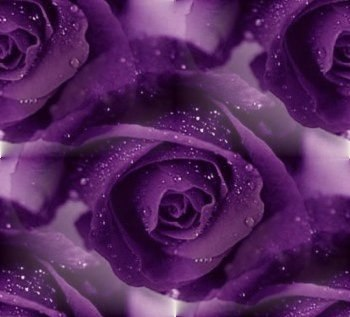 Цветочные и растительные фоны - Страница 2 KAQHF9li7u4