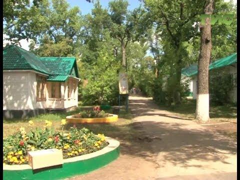 Мы тожехотим отдыхать в Волжском Артеке— признались экспертыОбщероссийского народного фронта