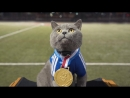 The Cat Who Caught the Laser 1080P HD mp4
