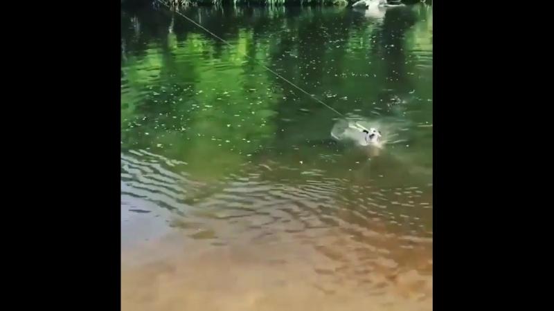Рыболовные тренировки