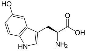 5 htp гидрокситриптофанТриптофан → 5-HTP → серотонин