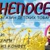 """магазин """"НЕПОСЕДА"""""""