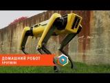 Домашний робот SpotMini