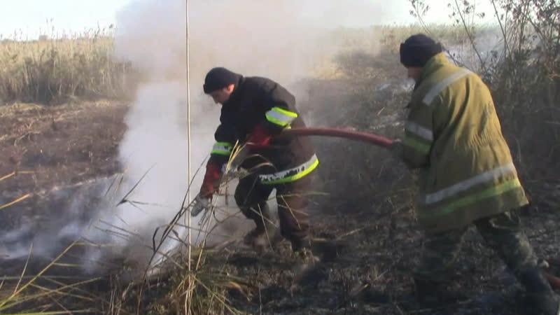 У Полтавській області знову горіли торфяники