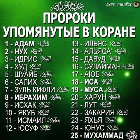 Фото №420121181 со страницы Абдулкадира Исакова