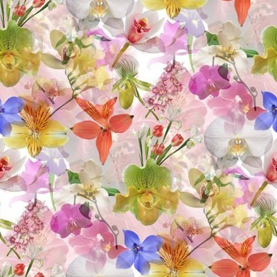 Цветочные и растительные фоны - Страница 3 VTJ8ogf1Whc
