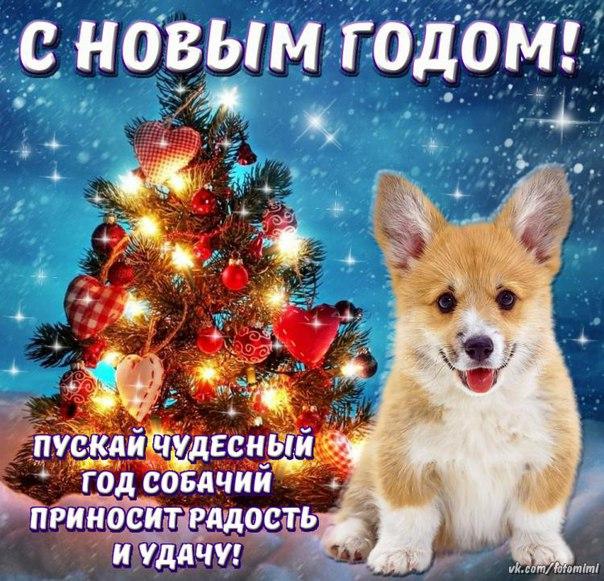 Фото №456268234 со страницы Вадима Гетманенко