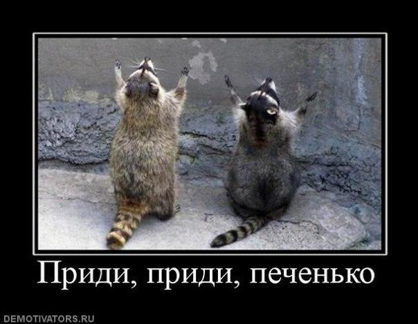 """Резервный фонд РФ и средства Фонда национального благосостояния могут быть """"проедены"""" уже в 2016 году, - Силуанов - Цензор.НЕТ 781"""