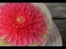 Cách làm rau câu 3d đẹp mà đơn giản tại nhà ( rau câu 3d hoa thược dược)- Amazing Gelatin Art Cake