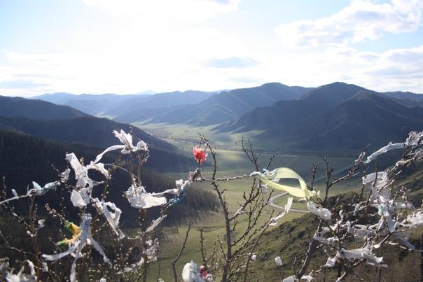 А сами лоскуты стали появляться по всему Алтаю.