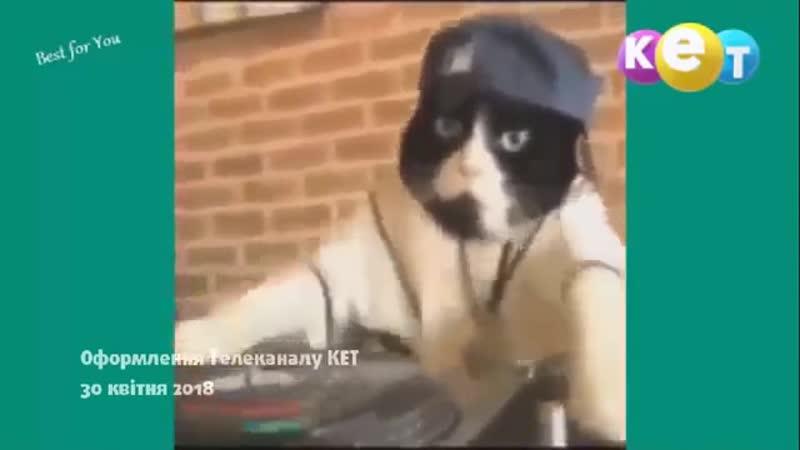 ПОВНА ІСТОРІЯ ТЕЛЕКАНАЛУ КЕТ,КОТ,САТ-2,ЧСН