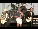 The Beach Boys - Catch A Wave (Live)