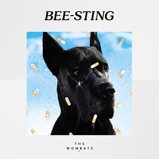 The Wombats альбом Bee-Sting