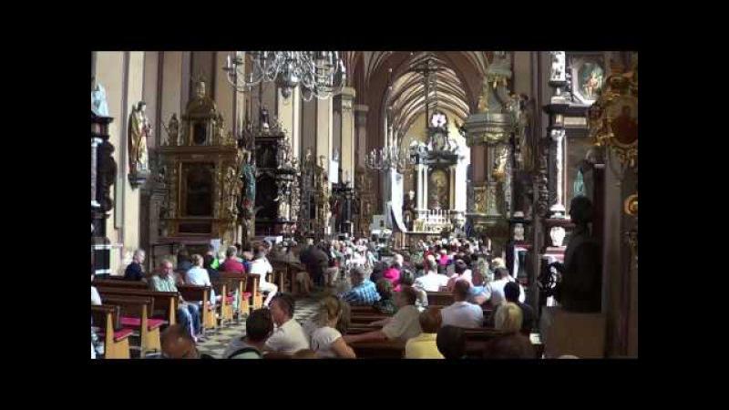 Prezentacja organowa we Fromborku - jedna z wielu przeróżnych )