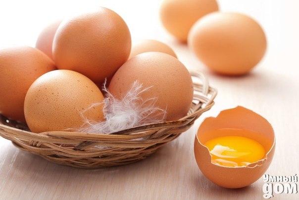 Что нужно знать о куриных яйцах? 1. Как читать штамп на яйце? Буква «д» или «с» означают соответственно – диетическое либо столовое яйцо. Первый знак на штампе обозначает дату – число и месяц «рождения» яйца, второй – категорию (а значит, его размер). 2. Чем отличается диетическое яйцо от столового? Диетическое яйцо (с красным штампом) отличается от столового своей свежестью. Оно должно быть реализовано в течение 7 суток с момента появления на свет. Затем, через неделю, яйцо переходит в разряд…