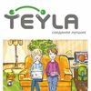 Сервис-провайдер «Тейла» (Teyla)