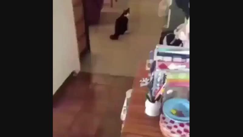 Ай лав ю
