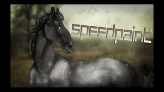 [SPEEDPAINT] Hi-Tek the horse
