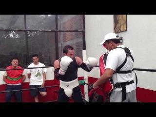 Видео спарринга Хуана Мануэля Маркеса перед боем с Тимоти Брэдли