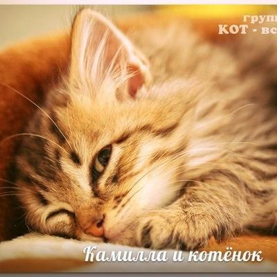 Камилла Салихова, 9 января , Давлеканово, id206869124