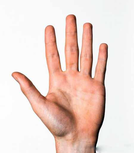 Линии руки используются для предсказания будущего в хиромантии.