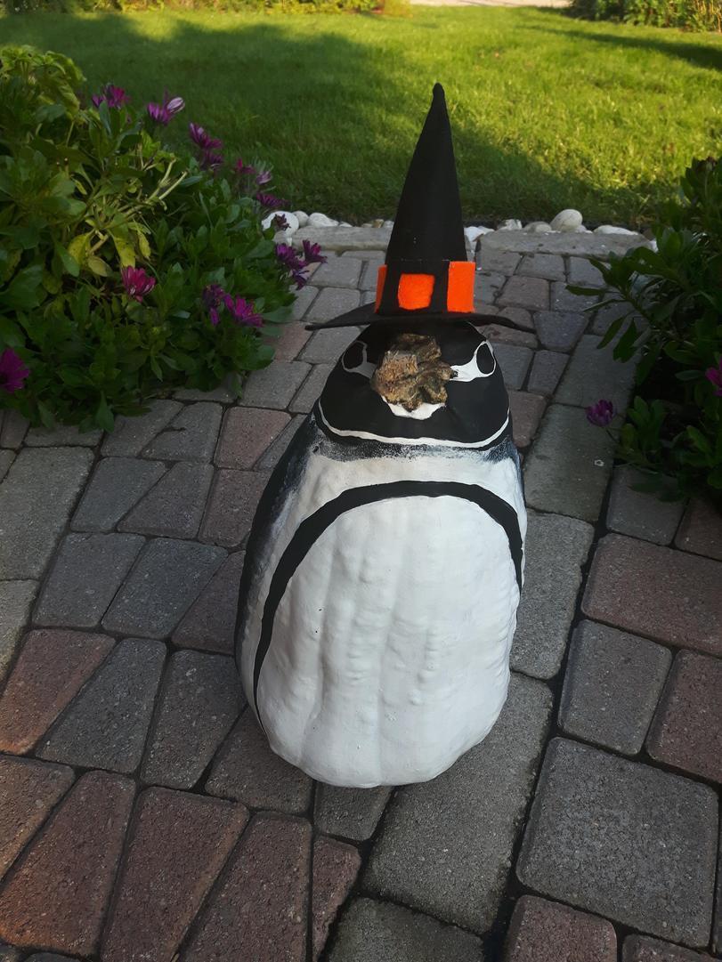 Пареньпринес с фестиваля тыкву, заявив, что она похожа на пингвина. Родственники с него посмеялись...