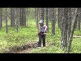 Кристина Пименова ищет белые грибы в Карелии в 10-ти км от Вокнаволока