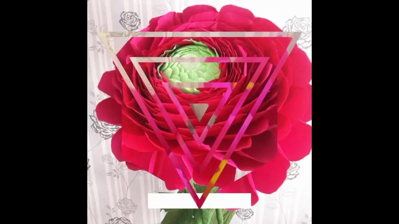 Ростовые цветы из гофрированной бумаги итальянского производства