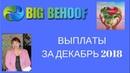 Проект BIG BEHOOF Выплаты в декабре 2018 года