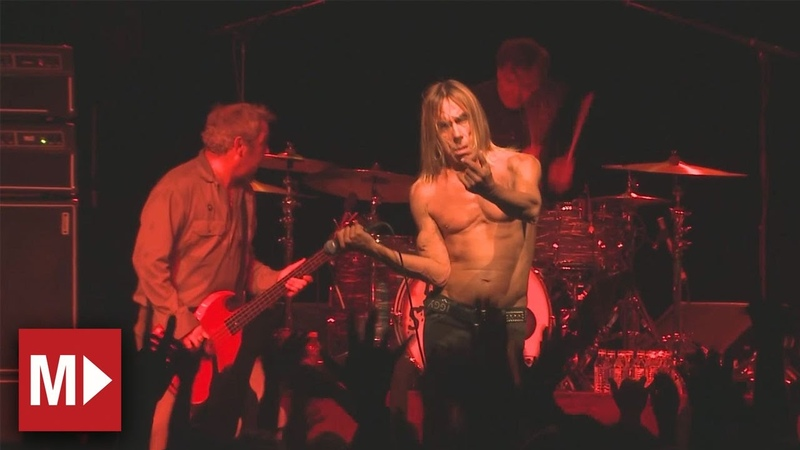 Iggy and the Stooges | Your Pretty Face Is Going To Hell | Live in Sydney