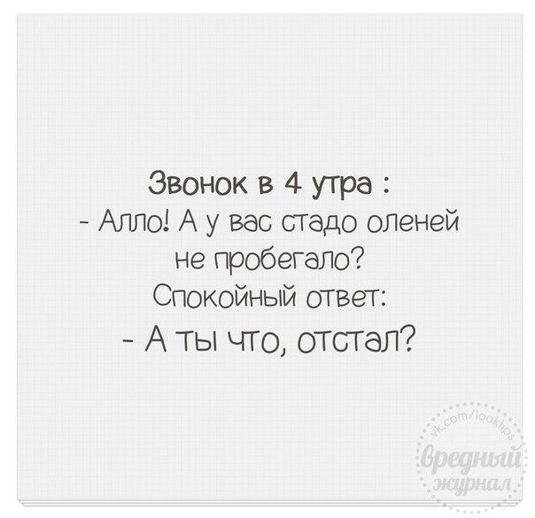 http://cs543106.vk.me/v543106666/14b06/l5Aqc-l_LG0.jpg