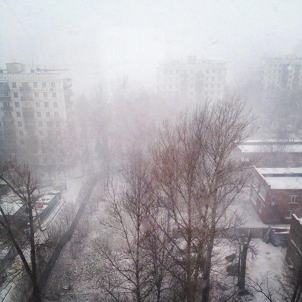 Вина Лапкес | Москва
