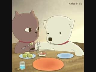 Котик с Собачкой (Как-то это очень мило)