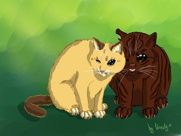 Коты воители звёздоцап и саша