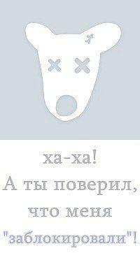 Елена Горшенина, 19 января 1995, Тюмень, id182461513