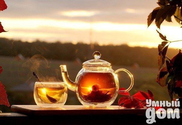7 целебных рецептов успокаивающих чаев. Жизнь современного человека невозможно представить без стрессовых ситуаций. Привести свою нервную систему в норму Вам помогут успокаивающие чаи. Также такие чаи полезны при раздражительности, повышенной нервозности, бессоннице и нервном истощении. Рецепты этих чаёв – это приятное, простое, мягкое и главное, безопасное средство. №1 Ингредиенты: шишки хмеля – 50 грамм, корни валерьяны – 50 грамм. Приготовление: берём 1 ложку смеси и заливаем его стаканом…
