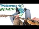 Тима Белорусских Незабудка на гитаре ТАБЫ