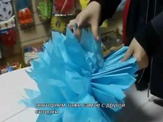 Как сделать помпоны из бумаги .mp4
