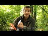 Набор выживания GERBER Bear Grylls Survival Basic Kit (31-000700)