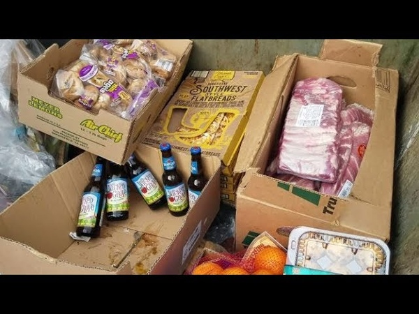 DUMPSTER DIVING ALDI DAILY VIDEO 48
