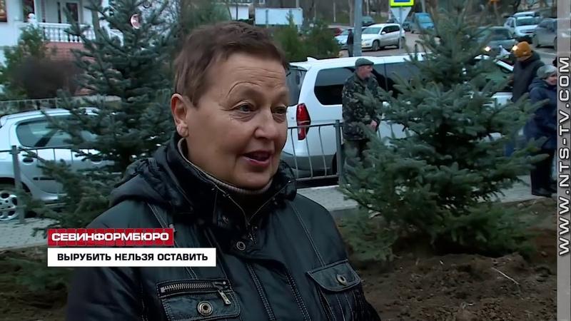 ОНФ в Севастополе выявил ряд нарушений в ходе работ по благоустройству общественной территории