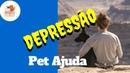 Depressão um gato ou cão pode ajudar você