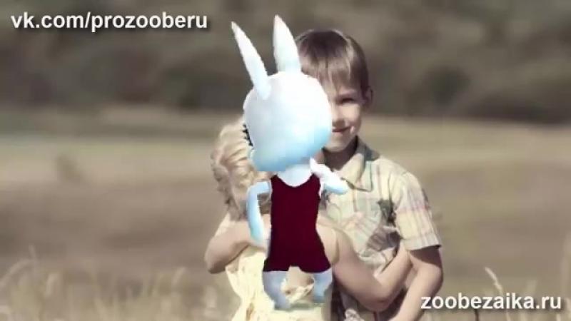 Krasivoe pozdravlenie dlya bratishki! Krasivye muzykalnye pozdravleniya ZOOBE Muz Zajka (MosCatalogue.net).mp4