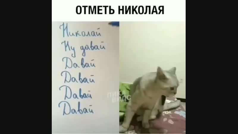 Отметь Николая mp4