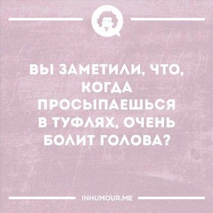 https://pp.vk.me/c543109/v543109554/1f9db/wDwQuFB3MWw.jpg
