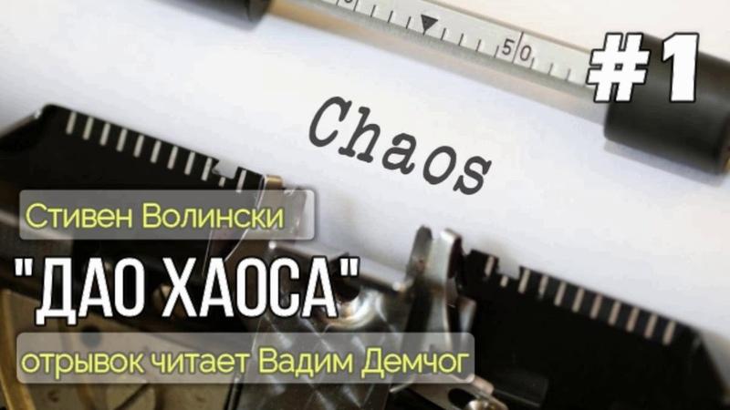 Стивен Волински Дао Хаоса. Отрывок читает Вадим Демчог